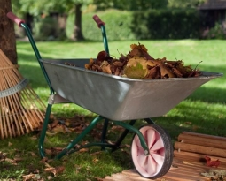 Autumn Lawn and Yard Maintenance Checklist