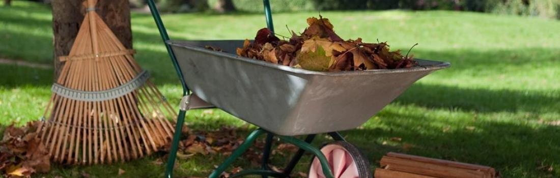 Autumn Lawn and Yard Maintenance Checklist