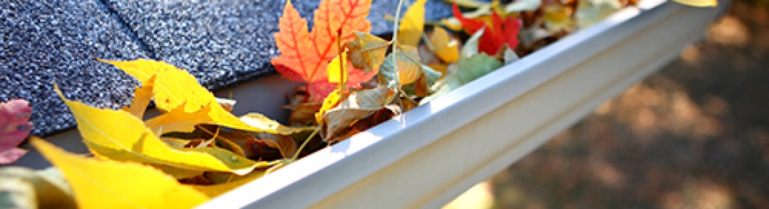Gutter Protection: Protect Your Home this Winter