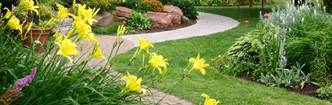 Landscaping Dos and Don'ts
